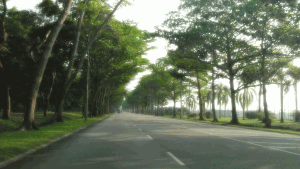 Changi Coast Road